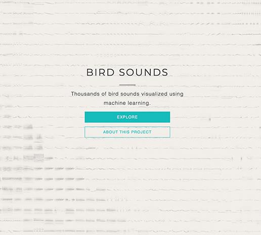 A.I. Experiments: Bird Sounds